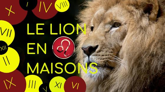 Le Lion en maisons astrologiques
