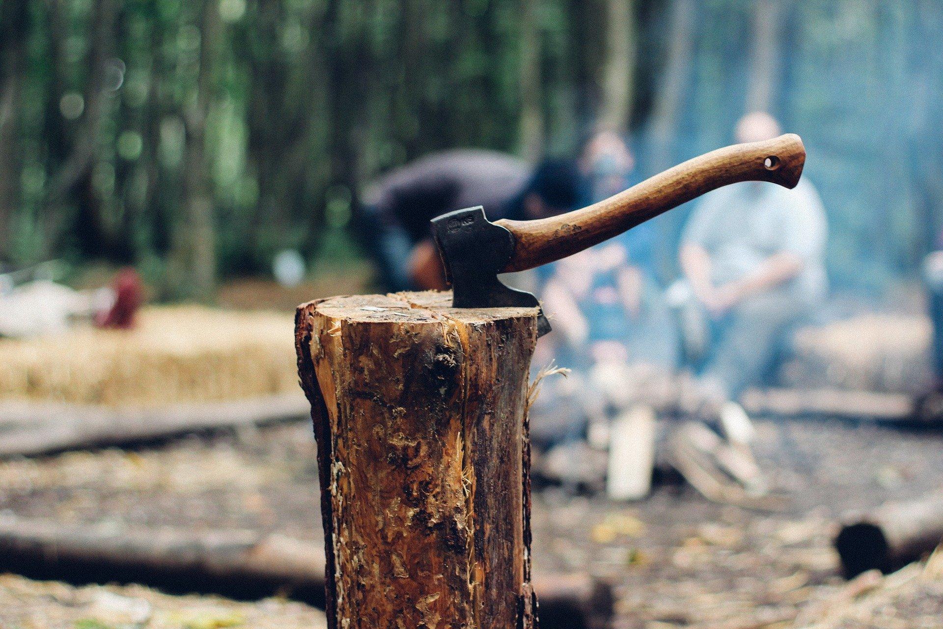travail dans les bois